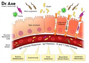 Щитовидная железа и кишечник